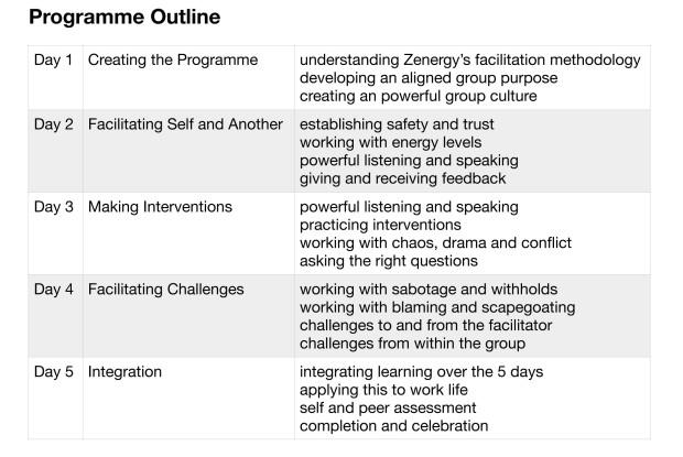 Art of Facilitation Programme Outline